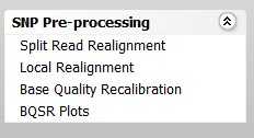 Figure 1: SNP Pre-processing steps in Strand NGS workflows